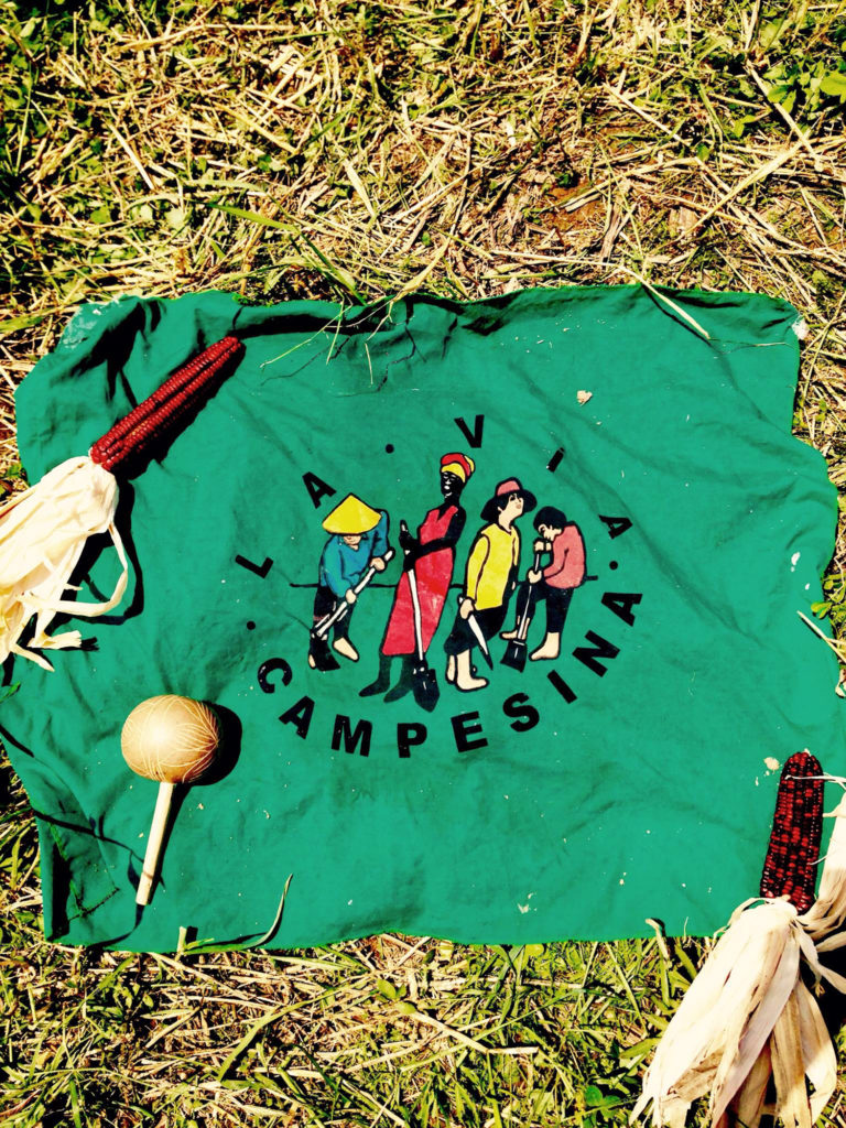 """""""La Via Campesina"""" logo printed on green cloth rests on yellow-green grass. Two ears of red corn sit atop the green cloth in the upper left and bottom right corners."""