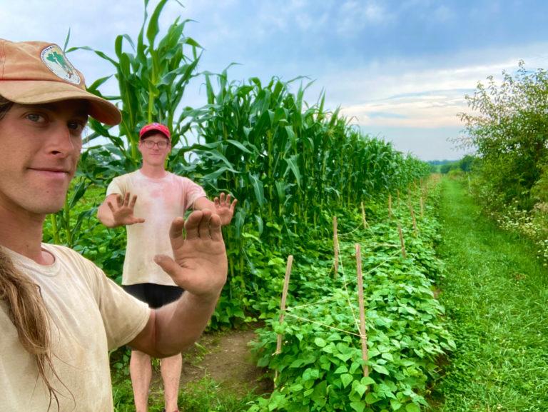 Two people standing in a farm field