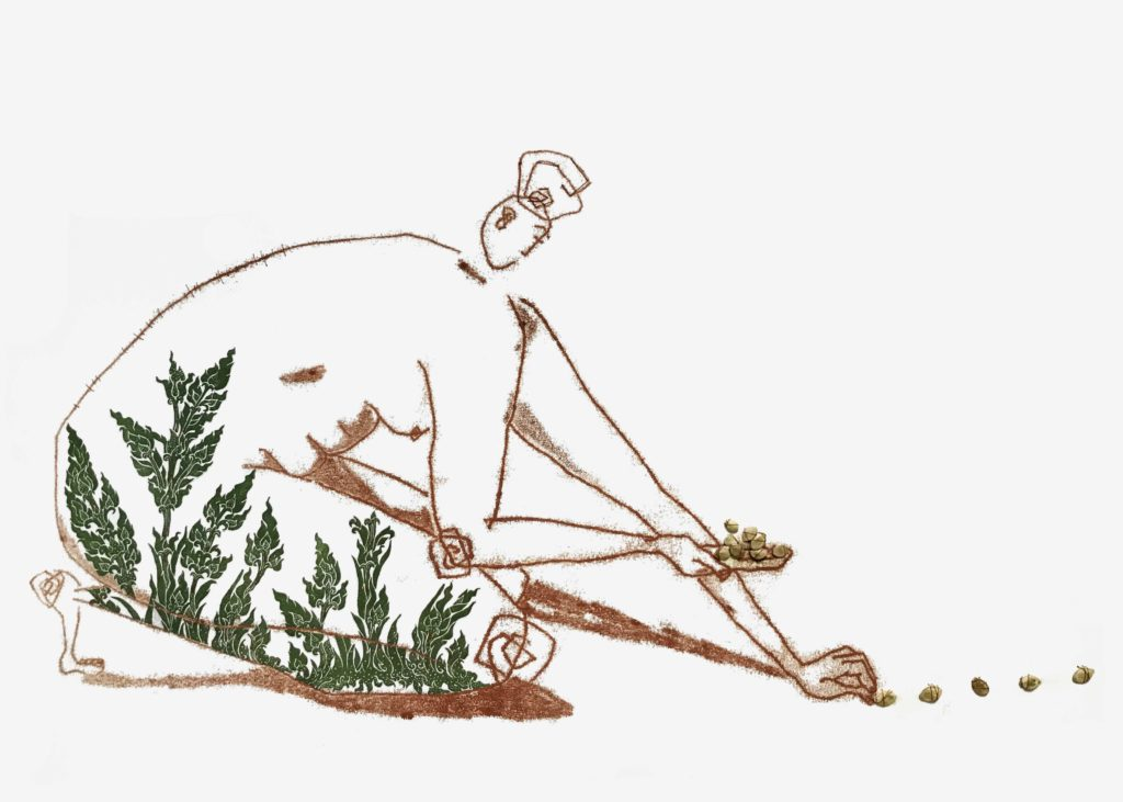 A femme figure drawn in a deep, mahogany brown (using the monotype technique of indirect drawing) is depicted kneeling down with one hand holding a pile of seeds, and the other hand outstretched, planting a row of seeds. The seeds are sewn onto the page with a thin thread matching the color of the figure. Thai designs of rice plants grow up the legs of the figure and curve slightly onto her back. These Thai designs are colored a dark, mossy green and were created with relief prints which were then cut out and sewn onto the page.